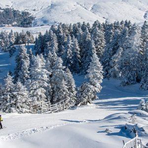 People are skiing on Uludag Mountain. Uludag Mountain is ski resort of Turkey.; Shutterstock ID 785743039; Purchase Order: site
