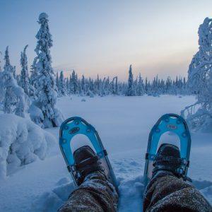Snowshoeing adventure Lapland