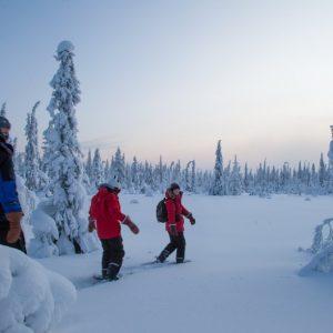 Harriniva Snowshoeing